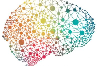Neurociencia Afectiva