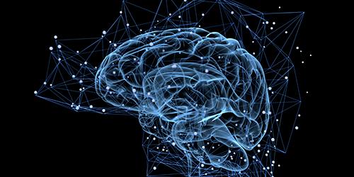 Curso de Especialización en Neuromarketing